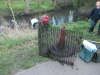 Crane Clean up April 2013 with 13th Twickenham Scout Grp