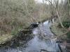 hogsmill-river1