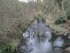 River Hogsmill Feb 2012
