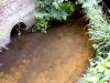 River Rythe