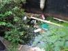 teddington-04-09-2011-5