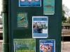 Teddington Lock posters