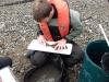 Tidal Survey 2011