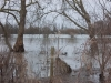 thames-floods-dec-2012-5