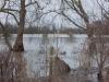 thames-floods-dec-2012-5