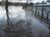 thames-floods-dec-2012-9